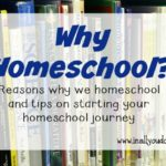 Teachable Tuesdays – Why Homeschool?