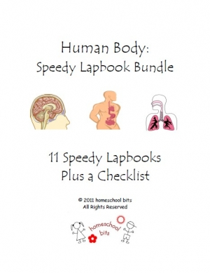 Human Body ~ 11 Speedy Lapbooks $1 TODAY ONLY!!!!