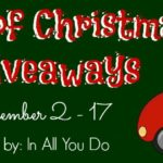 12 Days of Christmas Giveaways: Day 2 ~ My Christmas Wish