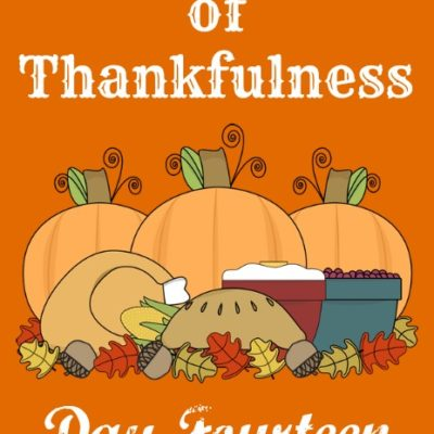24 Days of Thankfulness ~ Day 14