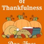 24 Days of Thankfulness ~ Day Three