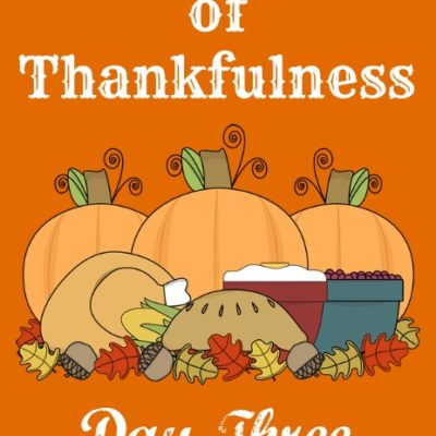 24 Days of Thankfulness ~ Day Three