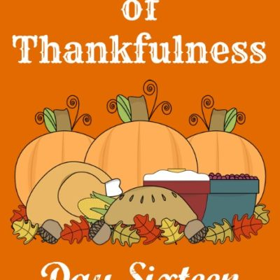 24 Days of Thankfulness ~ Day 16
