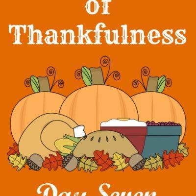 24 Days of Thankfulness ~ Day 7