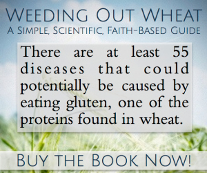 Weeding out Wheat ~ Fiction, Fad or TRUTH? {a review}