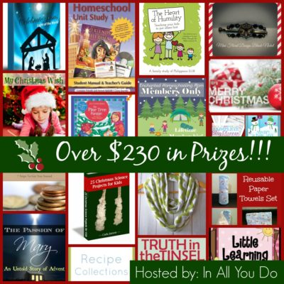 12 Days of Christmas Giveaways: GRAND PRIZE ~ Over $230 in Prizes!!!