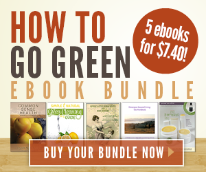How to Go Green ebook Bundle ~ 5 for $7.40
