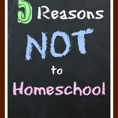 5 Reasons You Should NOT Homeschool