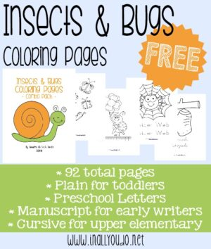 Insects & Bugs Coloring Pages