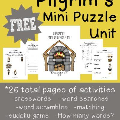 Pilgrim's Mini Puzzle Unit