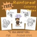 Rainforest Coloring sheets
