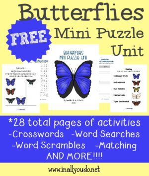 Butterfly Mini Puzzle Unit