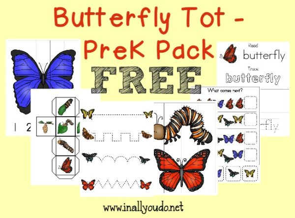 Now your little ones can enjoy learning all about Butterflies with this fun 35 page Butterfly Tot & PreK pack!! :: www.inallyoudo.net