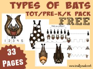 Bats Tot & PreK-K Pack