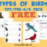 FREE Birds Tot & PreK-K Pack