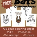 FREE Bats Coloring Pages & Emergent Readers