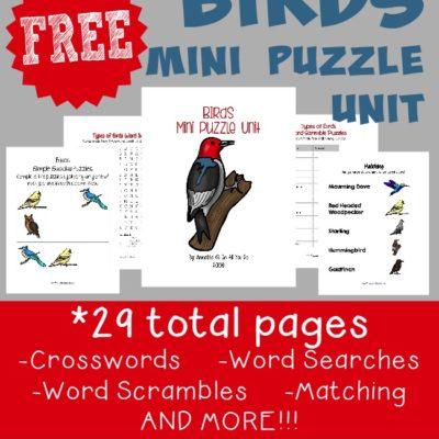 Types of Birds Mini Puzzle Unit