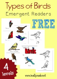 Now even your youngest readers can learn about birds with these fun Types of Birds Emergent Readers. :: www.inallyoudo.net