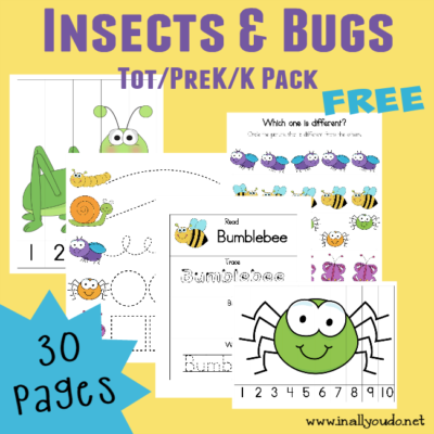 Insects & Bugs Tot & PreK/K printables