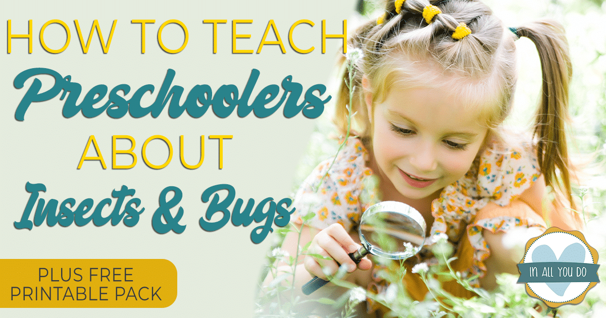 Don't miss these free insect printables to help teach about insects & bugs