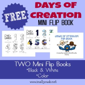 Days of Creation Mini Flip Book