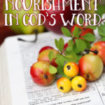 Nourishment in God's Word