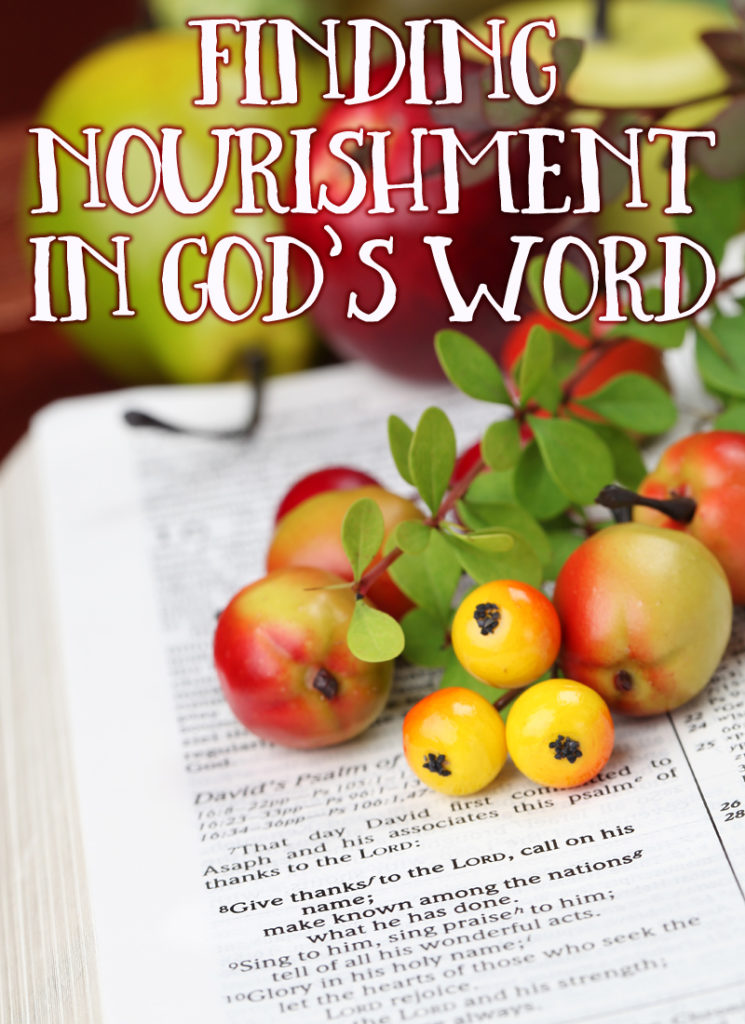 Our spiritual and emotional nourishment comes from God. Not our family or friends, but time spent one-on-one with God. Day 3 ~ 30 Days of Bible :: www.inallyoudo.net
