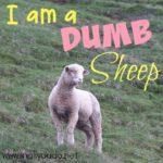 I am a Dumb Sheep