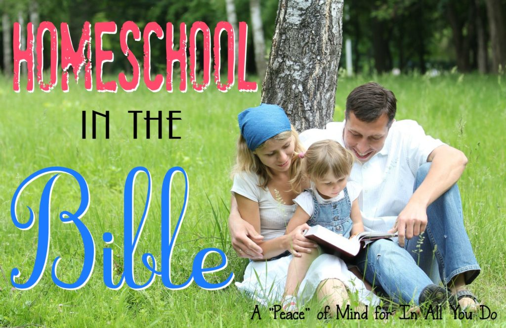 Have you ever thought about just using ONE book to homeschool? Read more about how one family simply uses the Bible to teach every subject. Day 7 ~ 30 Days of Bible :: www.inallyoudo.net