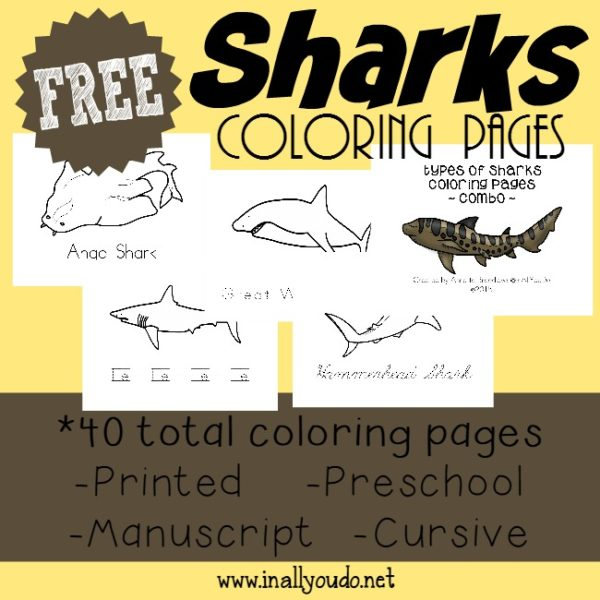 Enjoy Shark Week just a little more with these fun Types of Sharks Coloring Pages. 40 total pages for Toddlers - 5th Grade!! :: inallyoudo.net