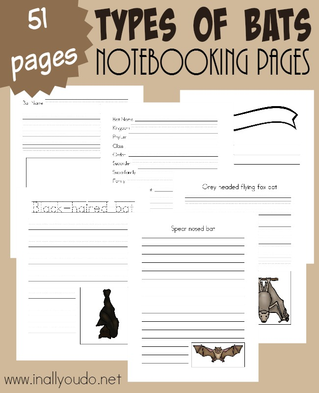 Whether you celebrate Halloween or not, Bats can be a FUN unit study. Use these Notebooking Pages to record all you learn! {51 total pages} :: www.inallyoudo.net