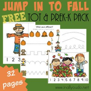 Little ones will LOVE doing these Fall themed Activities & Puzzles!! Over 30 pages PERFECT for Tots & PreK-K!! :: www.inallyoudo.net