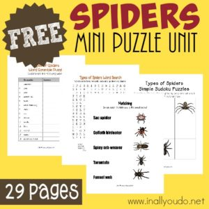 Types of Spiders Puzzles & Activity Pack
