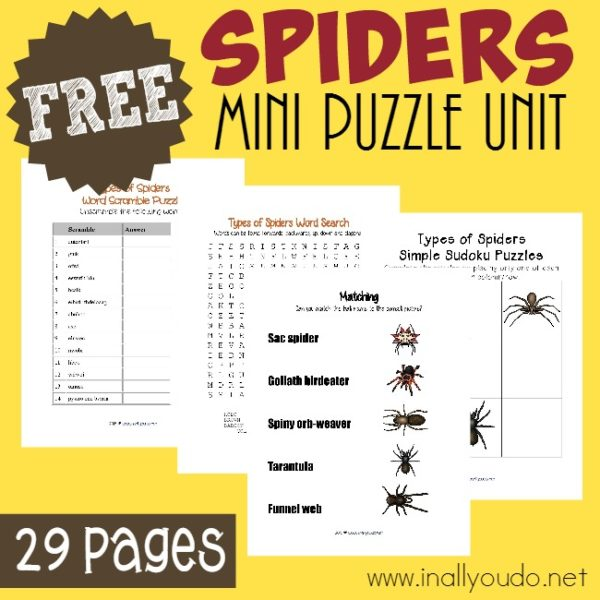 This 29 page Spiders Puzzles & Activity Pack is a PERFECT way to learn more about the creepy, crawly creatures. Includes Word Searches, Word Scrambles, Sudoku and MORE!! :: www.inallyoudo.net