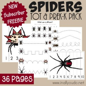 Now your Little ones can join in the learning fun with this Spiders Tot & PreK-K Pack!! Full of puzzles, prewriting, matching and more! {36 total pages} :: www.inallyoudo.net