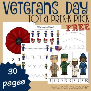 Little ones can learn about the heroes of our nation (past and present) with this Veterans Day Tot & PreK-K Pack. {30 total pages} :: www.inallyoudo.net