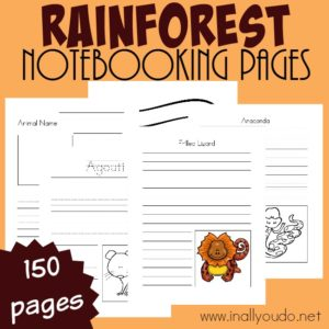 There is so much to learn about the Rainforest and these Notebooking pages are PERFECT to record it all down. Includes 150 pages of templates. :: www.inallyoudo.net