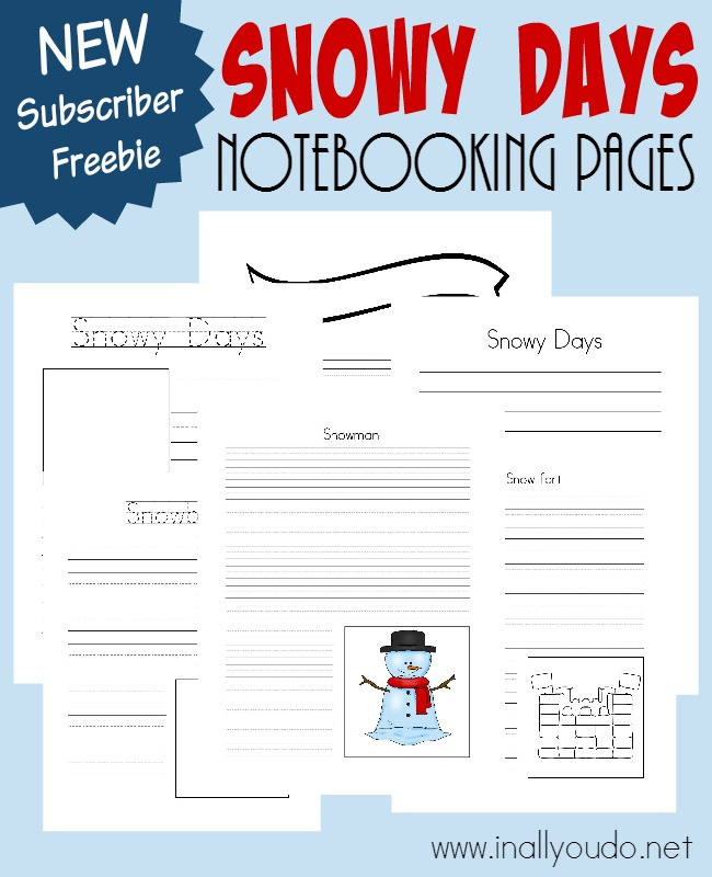 Record all kinds of research, observations and more about the Snow with these Notebooking Pages. {48 pages} :: www.inallyoudo.net