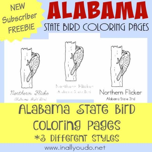 Join our Across the USA in 31 Days series this month! Today you can grab these FREE Alabama State Bird Coloring Pages! :: www.inallyoudo.net