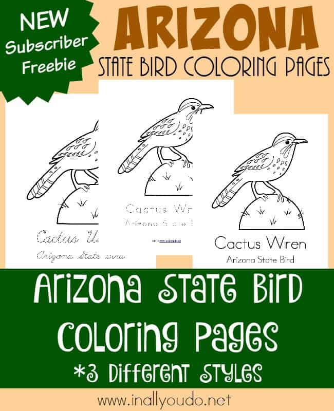 Let's travel to Arizona today and learn all about their state bird, the Cactus Wren. Grab these printables to color while you read all about it! :: www.inallyoudo.net