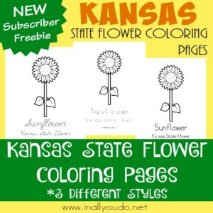 Travel to the heart of the Midwest to the state of Kansas. A state full of sunshine and sunflowers. Learn more about the state flower with today's FREE Coloring Pages. :: www.inallyoudo.net