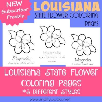 Across the USA in 31 Days: Louisiana