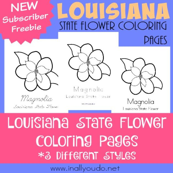 Traveling to the bayou we'll find the beautiful Magnolia, the state flower of Louisiana. Read more about it while you color along with these FREE printables! :: www.inallyoudo.net