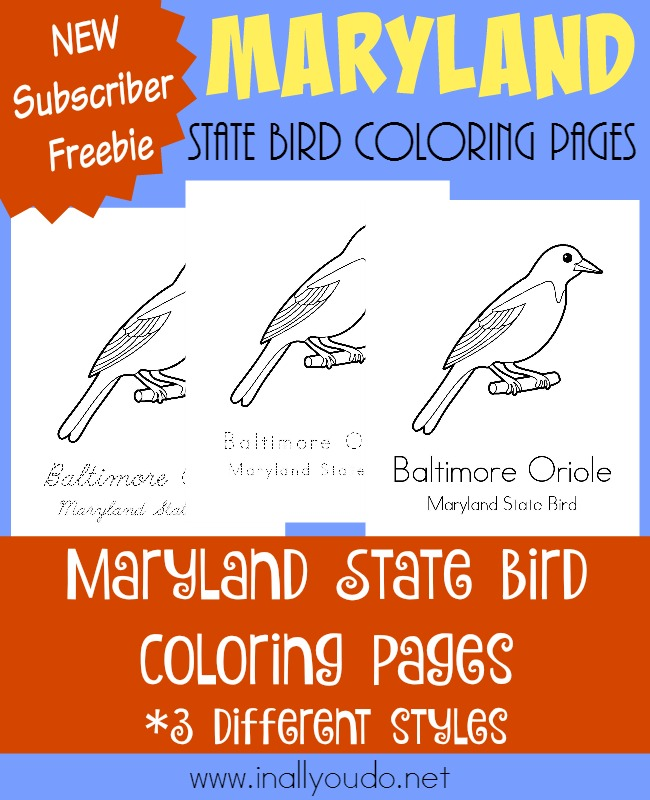 Today you can visit the mid-Atlantic state of Maryland and learn more about its state bird, the Baltimore Oriole, with these FREE Coloring Pages. :: www.inallyoudo.net
