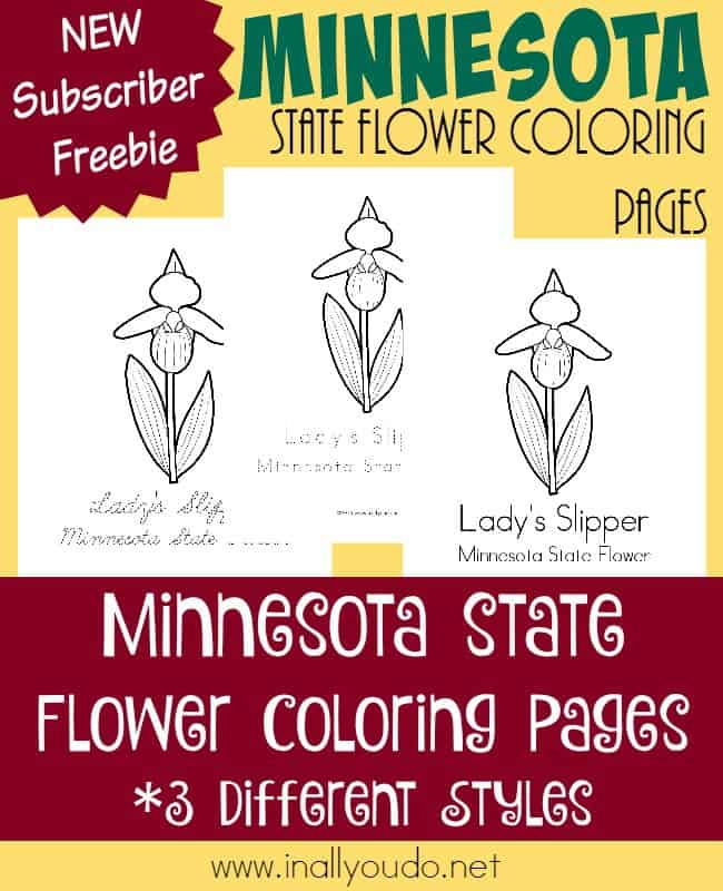 Did you know it is illegal to pick Minnesota's state flower? Learn more about this rare wildflower and its history with these FREE Coloring Pages! :: www.inallyoudo.net