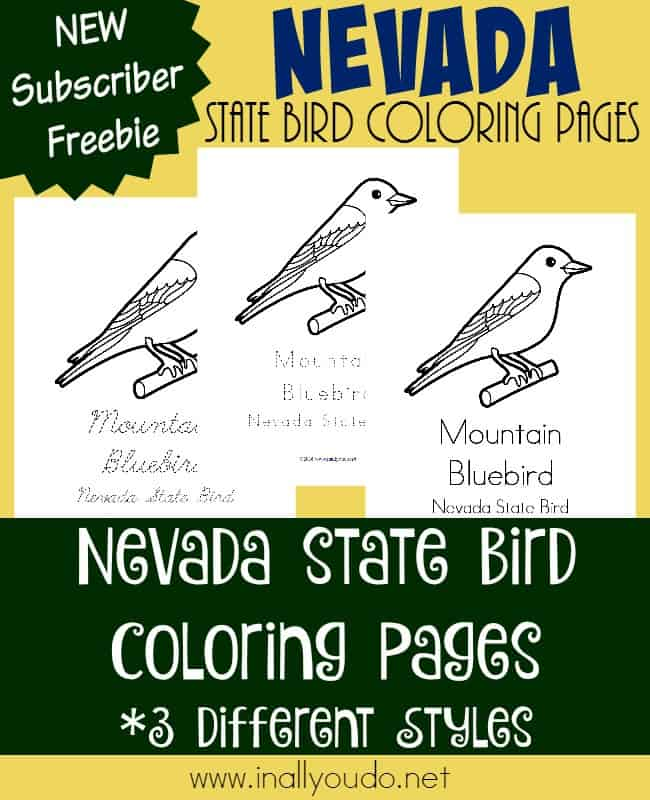 Learn about the state bird of Nevada, the Mountain Bluebird, Read more about the state and color these FREE State Bird pages too! :: www.inallyoudo.net