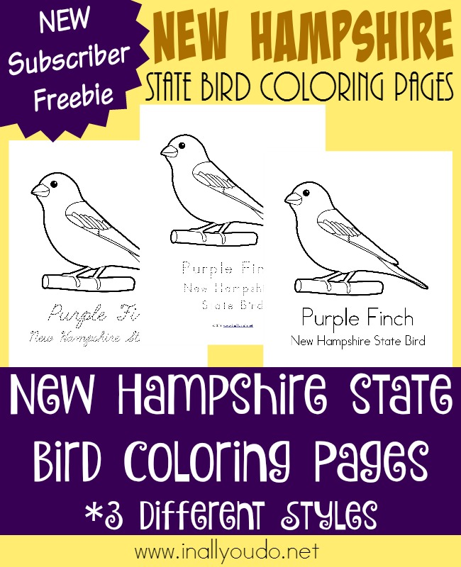 Learn about the state bird of New Hampshire - the Purple Finch. It can be seen in a wide range of states through the USA and in Canada. {free printables} :: www.inallyoudo.net