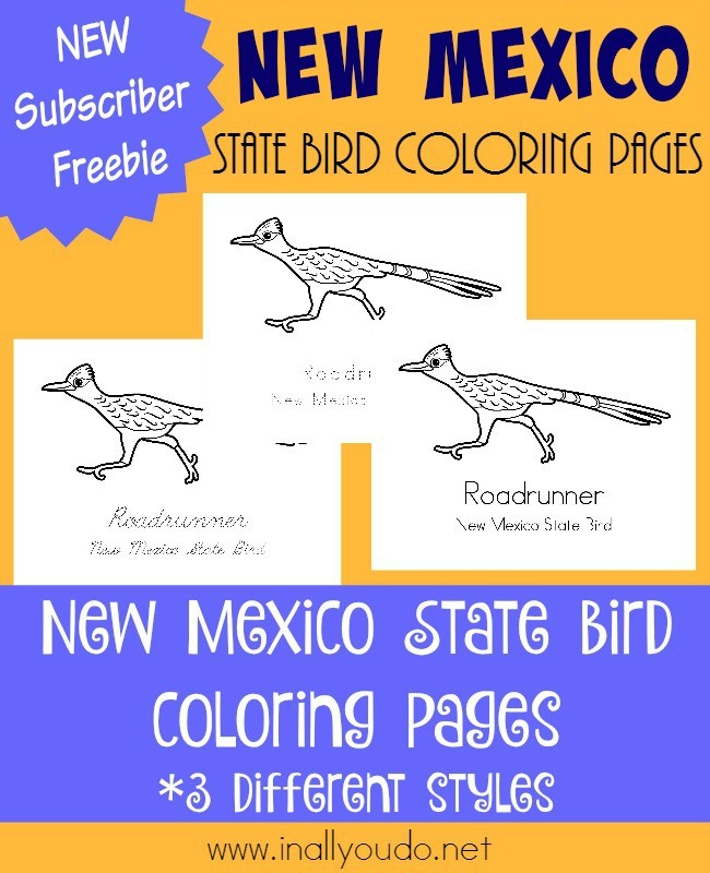 Learn about New Mexico's fast running state bird the Roadrunner with today's coloring pages. {free printables} :: www.inallyoudo.net