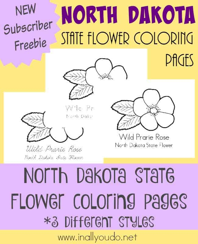 Traveling to most northern state in the Midwest, we are headed to North Dakota to learn about it's state flower. {free printables} :: www.inallyoudo.net
