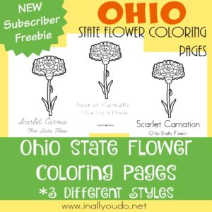 While you might expect the Buckeye to be their state flower, this surprise has a fun and unique history. Learn all about it with today's FREE Ohio State Flower Coloring Pages. :: www.inallyoudo.net